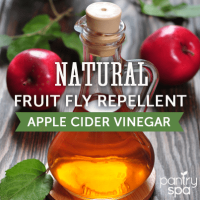 Drown Fruit Flies with Apple Cider Vinegar & Cucumbers Repel Ants